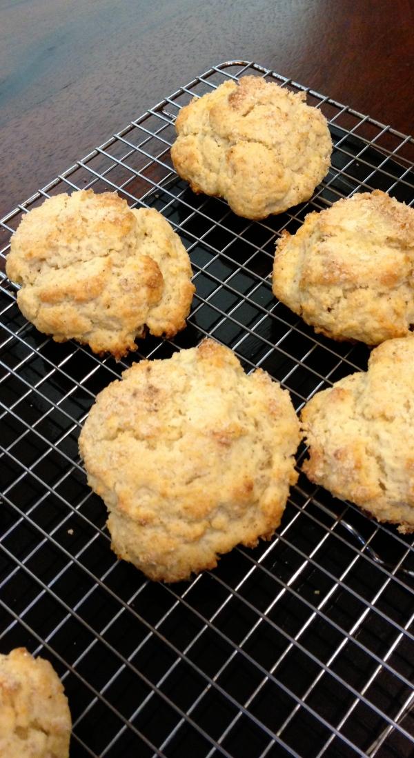 easy scone-y, shortcake-y biscuit-y vehicle for jam